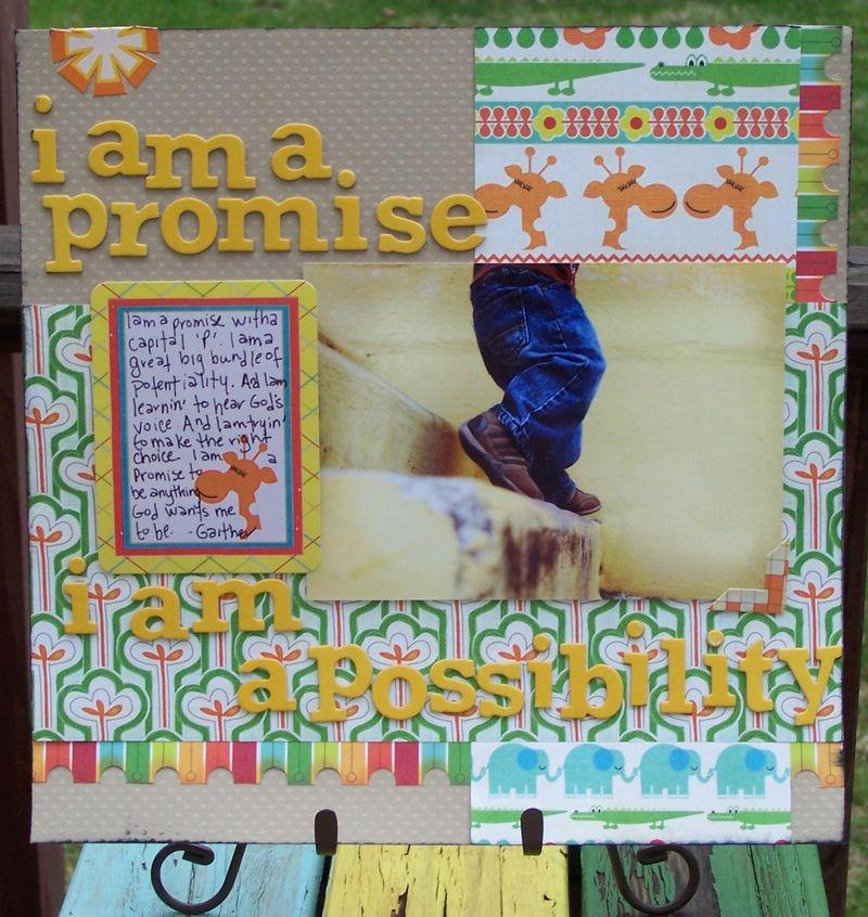 Promise lrg